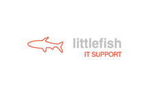 Little Fish: IT Support, IT Services, Network Support, PC Help, Server Support